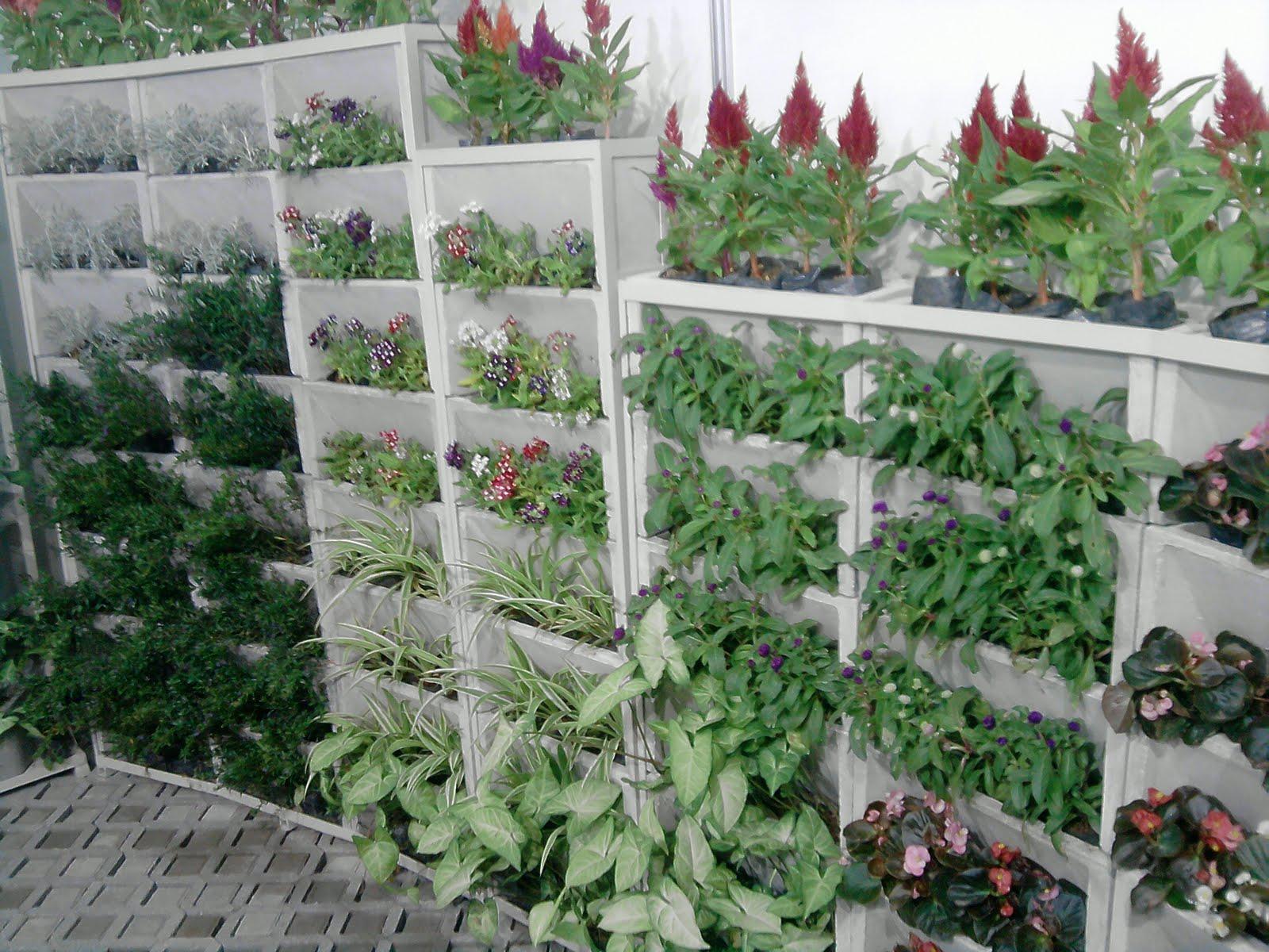 jardim vertical tijolo:Jardim Vertical – Vasos Ornamentais
